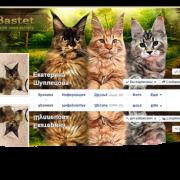 Шапки социальных сетей (Ok, Vk. Fb)
